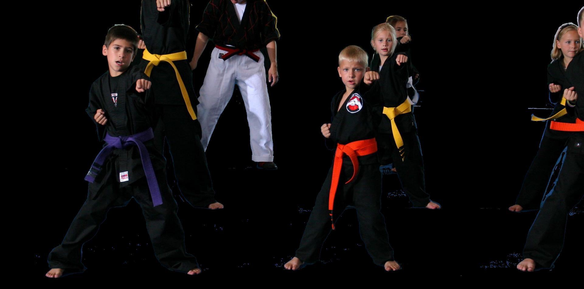 American Kenpo Karate Class