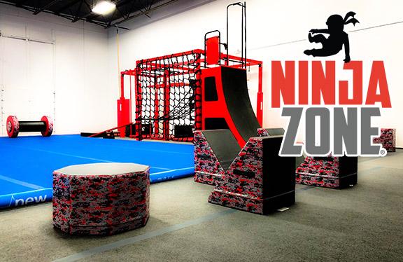 NinjaZone_Pic